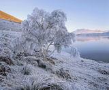 zero, Loch a Chroisg, Achnasheen, Scotland, temperatures,frost, loch, frozen, crystalline photo