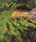 Alladins Cave, Cove Bay, Moray, Scotland, tide, sculpted, caves, colour, green, seaweed, ochre, sandstone, bedrock, cave photo