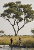 Apprentice Poling, Okavango Delta, Botswana, Africa, dugout, canoes, narrow, channels, reeds, lakes, Ben, Lauren, boatme photo