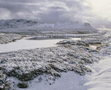 Arctic Dava, Dava Moor, Moray, Scotland, blizzard, spring, moor, expanse, Cairngorms, beautiful, wild, bleak  photo