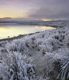 Arctic Freeze, Loch A Chroisg, Achnasheen, Scotland, winter, sunset, temperature, zero, grasses, coated, hoar frost, fro photo