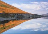 Arrowhead Loch a Chroisg, Loch a Chroisg, Achnasheen, Scotland, Torridon, ice, still, reflections, rusty, bracken, frost photo