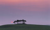 Blood Orange, Nairn, Highlands, Scotland, June, sun, field, hillock, silhouette, crimson, mist, haze, green, grass, sky  photo