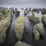 Bone Yard Square, Cove Bay, Moray, Scotland, low tide, barnacle, rocks, melt, sculpted, tides, vertebrae, rough, surreal photo