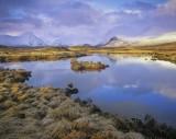 Brushed Gold, Rannoch Moor, Glencoe, Scotland, brush, grass, golden, sunlight, snow, peaks, Blackmount, cloudy, sky, fro photo