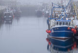 Burghead Haar bour, Burghead, Moray, Scotland, misty, damp, haar, sea, coast, boats, moored, harbour, dawn, sunrise, blu photo