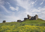 Buttercup Castle, Duffus Castle, Moray, Scotland, wild, flowers, public, ruins, buttercups, carpet, slopes, blue, clouds photo