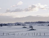 Cairngorm, chill, Aviemore, Cairngorm, Scotland, stubble, cut, field, winter photo