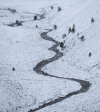 Cairngorm Serpent, Cairngorm, Highland, Scotland, serpentine, river, meanders, scale, scots pine, trees, snow, simplicit photo