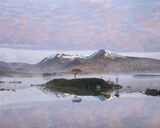 Candy Floss Glencoe, Rannoch Moor, Glencoe, Scotland, sky, pink, iconic, island, tree, April, mist, water, reflections photo
