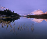 Cerise Clair, Loch Clair, Torridon, Scotland, winter, light, radiant, pink, soft, snow, Liathach, loch, golden, reed, af photo
