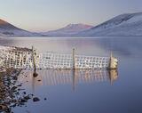 Chilled Chroisg, Loch A Chroisg, Achnasheen, Scotland, freezing, temperatures, minus, hoar frost, snow, Torridon, posts  photo