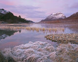Clair Candy, Loch Clair, Torridon, Scotland, spectacular, still, sunrise, fiery, candy floss, pink, frosted, grasses, Li photo