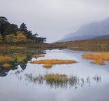 Clair Gloaming Square, Loch Clair, Torridon, Scotland, dreamy, soft, twilight, blue, pre-dawn, Liathach, reflection, sep photo