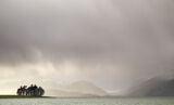 Clearing Storm Appin, Appin, Argyll, Scotland, rain, obliterated, view, trees, concealing, snow, mountains, sunlight  photo