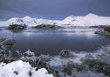 Cold Twilight 3, Rannoch Moor, Glencoe, Scotland, sunrise, winter, breath, pool, brittle, hoar frost, grasses, frozen   photo