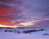 Crimson Flush, Dava Moor, Highlands, Scotland, deep, snow, extreme, volcanic, red, sunset, crimson, sky, road photo