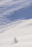 Deep Snow 9, Anderdalan, Senja, Norway, vast, empty, snow, lone, tree, graphics, patterns, geometric, Yin-Yang, unblemis photo
