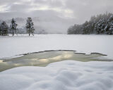 Deep Winter, Loch An Eilein, Cairngorm, Scotland, deep, unblemished, snow, dimpled, ambient, soft, overcast, sky, castle photo
