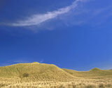 Dream Dunes, Dunnet Bay, Caithness, Scotland, graphic, minimal, sculpted, grass, fluffy, clouds, complementary, cirrus   photo