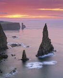 Duncansby Dawn, Duncansby Stacks, Caithness, Scotland, summer, morning, warm, cool, colours, sun, clouds   photo