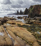 Duncansby Head, Duncansby, Caithness, Scotland, massive, dagger, teeth, monstrous, beach, bedrock, limpets, shells, infa photo