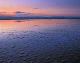 Flat Broke, Findhorn, Moray, Scotland, beautiful, pink, twilight, blue, islets, sand, low tide, sea, creeping  photo