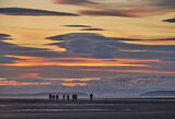 Flock of Seagulls, Findhorn Bay, Moray, Scotland, walking dogs, youngsters, sky, colour, intensity, silhouetted shapes, flock, gulls, spooked, whirled,