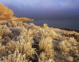 Frosted Ginger, Loch A Chroisg, Achnasheen, Scotland, gorgeous, sun, stormiest, sky, frozen, grass, ice, encrusted   photo