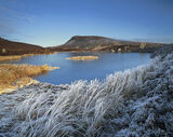 Frosted Oasis, Dava Moor, Moray, Scotland, winter, moor, loch, frozen, grasses, melt, ice, reeds, hoar, frost photo