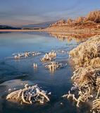 Frosties Loch Achanalt, Loch Achanalt, Achnasheen, Scotland, ice, caramel, ginger, sunrise, birch, trees, reflection, lo photo