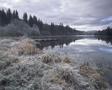 Frosty Loch Ard, Loch Ard, Aberfoyle, Scotland, winter, pastel, muted, palette, serenity, stillness, mirror, reflection photo