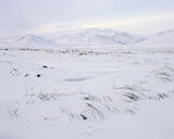 Frozen Glascarnoch, Loch Glascarnoch, Highlands, Scotland, cold, crusty, white, grass, mountains, pale, blue, stark  photo