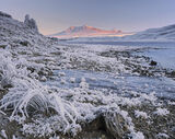 Frozen In Time, Loch A Chroisg, Achnasheen, Scotland, cold, dry, morning, ice, solid, grass, rime, frost, hard, sun, ora photo