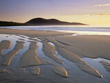 Gold Finger, Traigh Mhor, Harris, Scotland, low tide, westerly, gale, coarse, grain, sand, orange, trenches, furrows  photo
