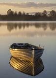 Gold Plated Rusky 2, Loch Rusky, Trossachs, Scotland, morning, sunshine, mist, golden, gold, burnished, flank, row boat,