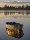 Gold Plated Rusky 3, Loch Rusky, Trossachs, Scotland, morning, sunshine, mist, golden, light, shines, varnished, woodwor