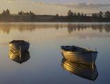 Gold Plated Rusky 4, Loch Rusky, Trossachs, Scotland, morning, sunshine, mist, golden, light, varnished, woodwork, burni