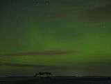 Gollanfield Aurora, Gollanfield, Highlands, Scotland, winter, evening, surge, solar, activity, vivid, trees, silhouette, photo