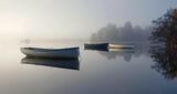 Heavenly Harbour, beautiful, mist, filtered, sunlight, birch, monochromatic, mooring, secluded, reeds, row boats, bracke