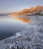 Iced Ginger, Loch Achanalt, Strathbran, Scotland, sliver, caramel, sunrise, frosted, birch, trees, ginger, cool, warm, b photo