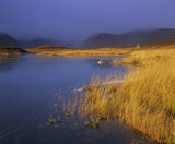 Inky Blue Gold, Loch Na Stainge, Highlands, Scotland, brief, superlative, light, transient, colour, rainbow, Black Mount photo