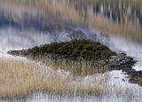 Inverpolly Zen, Loch Lurgainn, Inverpolly, Scotland, Zen, disturbance, sheltered, bays, harbours, reed bed, heather, isl photo