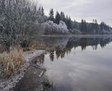 Loch Ard, Aberfoyle, Scotland, winter, frost, dull, muted, subdued, ice, atmosphere, silent, tranquil, hibernation, slum photo