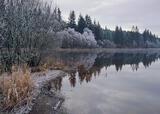 Loch Ard, Aberfoyle, Scotland, winter, frost, dull, muted, subdued, ice, atmosphere, silent, tranquil, hibernation, slum photo