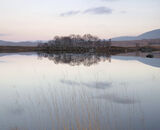 Loch Ba Blush, Rannoch Moor, Glencoe, Scotland, delicacy, hues, pastel, enthralling, pink, twilight, blue, reeds, yellow photo