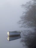 collection, pale, blue, row boats, charming, still, misty, forgotten, corner, brambles, birch, light photo