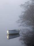 collection, pale, blue, row boats, charming, still, misty, forgotten, corner, brambles, birch, light
