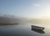Morning Mist Rusky 2, Loch Rusky, Trossachs, Scotland, serene, serenity, moored, row boat, mirror, doft transition, gold photo