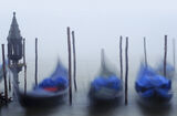 Nodding Gondolas, St Marks Square, Venice, Italy, sunrise, mist, colours, glow, beautifully, light, red,  photo